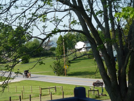 Mesopotamia, OH: View of Amish countryside from porch