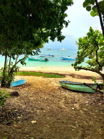 Culebra International Hostel照片