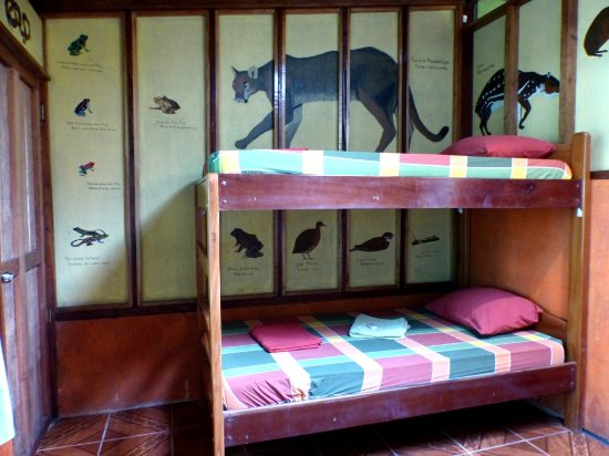 "Rio Drake Farm: Room ""Tapir"": Bunk bed"
