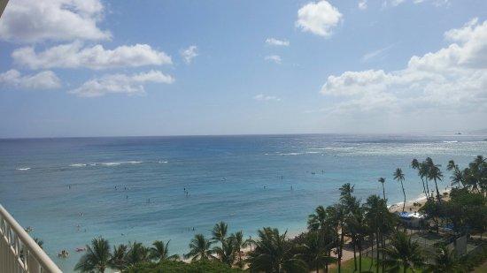 Waikiki Shore: 0630161522_large.jpg