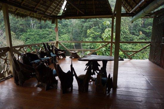 Yarina Eco Lodge: photo0.jpg
