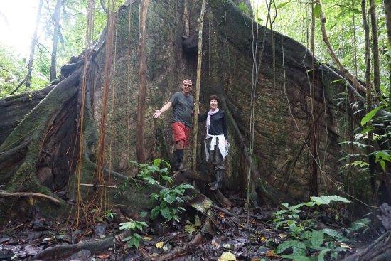 Yarina Eco Lodge: photo4.jpg