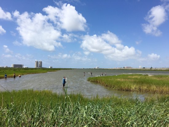 Galveston Island, Teksas: photo0.jpg