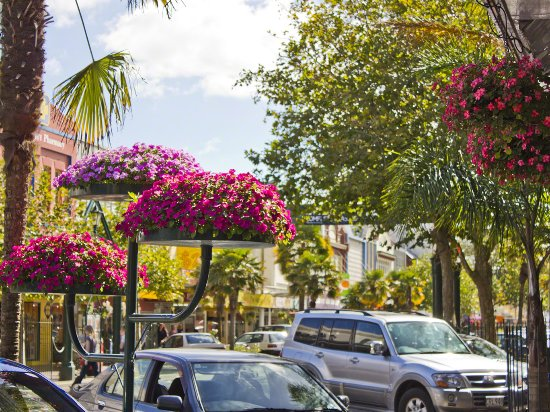 Main Street Flowers In Whanganui, New Zealand