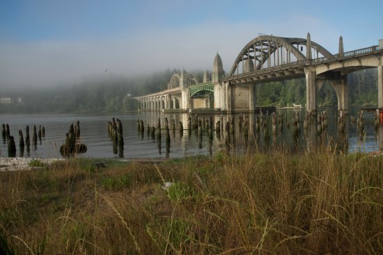 River Roasters: Siuslaw Bridge, which is just outside the coffee shop