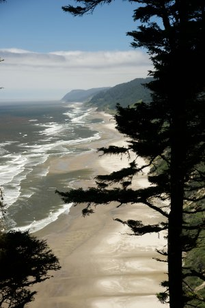Florence, OR: View of Hobbit Beach from Heceta Head Trail