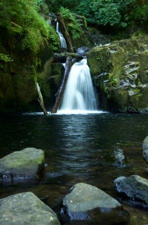 Mapleton, Oregon: Gorge falls at Sweet Creek