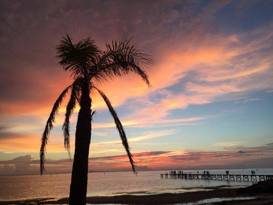 Ruskin, Floride : photo3.jpg