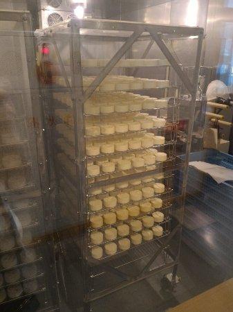 Furano Cheese Craft Center: P_20160630_152534_large.jpg