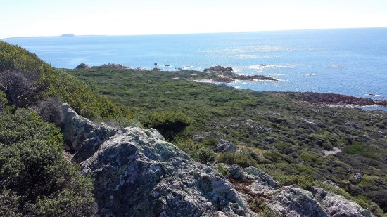 Rocky Cape, Australia: From the lighthouse - looking west towards Stanley - the Nut