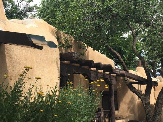 Landscape - Sagebrush Inn & Suites Photo