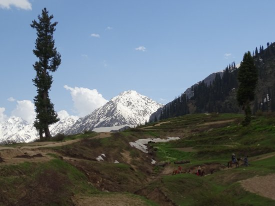 Kaghan, باكستان: Lalazar