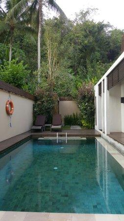 The Samaya Bali Ubud: 20160704_080955_large.jpg