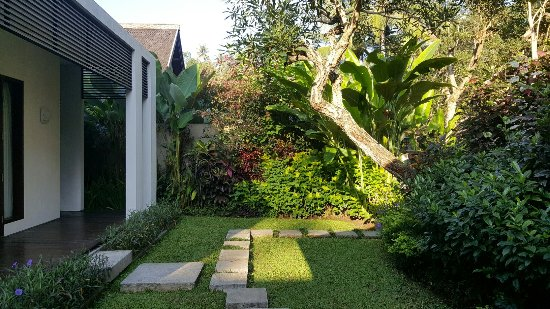 The Samaya Bali Ubud: 20160704_080944_large.jpg