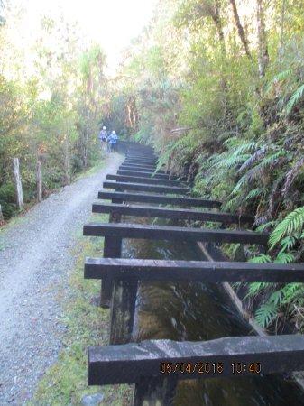 West Coast Region, Neuseeland: Along the waterways towards Lake Kaniere.