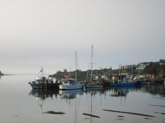 Invercargill, Nueva Zelanda: Riverton
