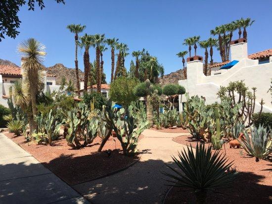La Quinta, Califórnia: photo3.jpg
