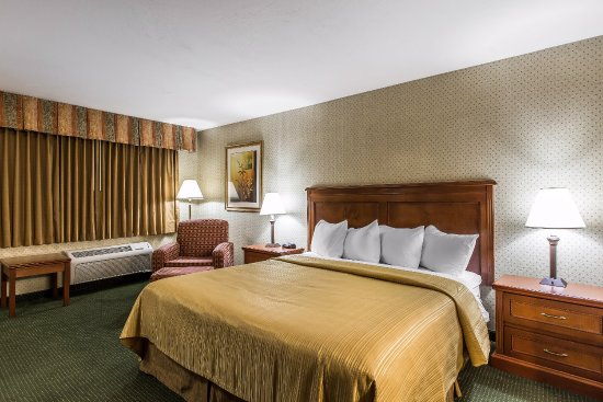 Quality Inn : Deluxe King Bed
