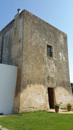 Torre del Cardo: photo7.jpg