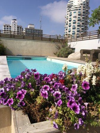 海景套房酒店照片