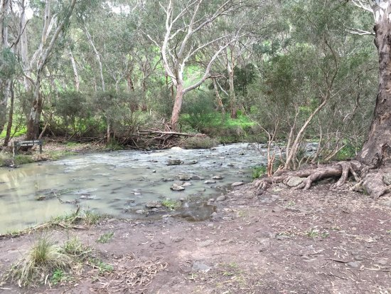 Keilor, Australia: This is not for the faint hearted.Hill is really steep although it is a proper footpath. If you