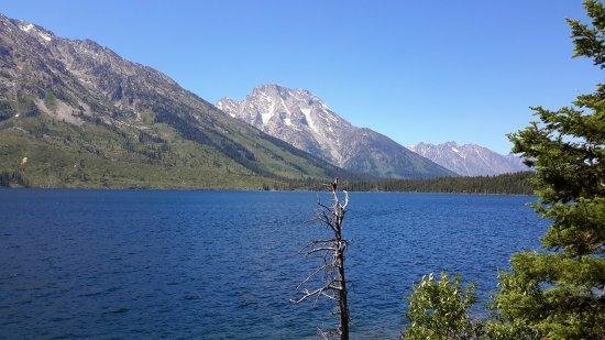 Jenny Lake照片