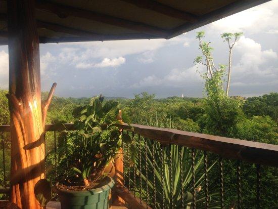 Villa Mango張圖片