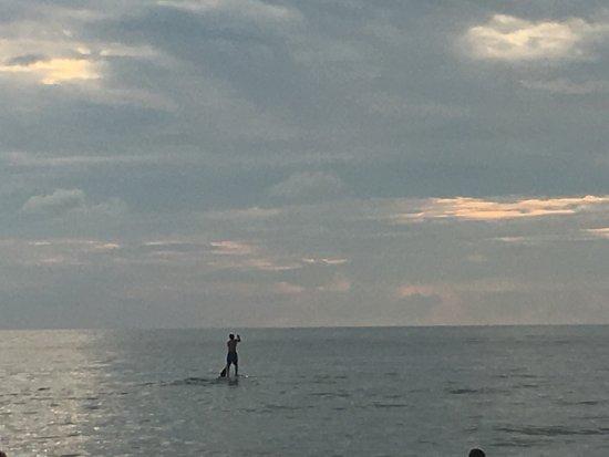 Vanderbilt Beach, FL: photo4.jpg