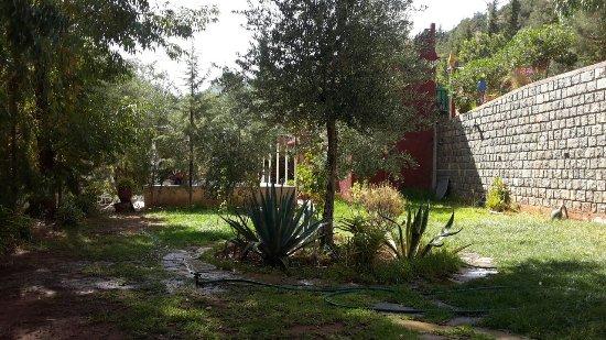 Bungalow et jardin avec vue sur le lac picture of maison for Bungalows el jardin retalhuleu guatemala
