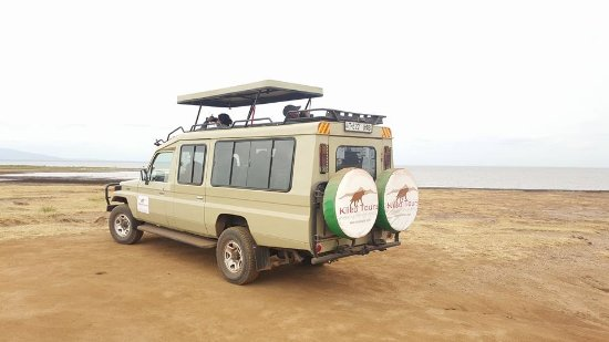 Kileo Tours & Safaris Company Ltd