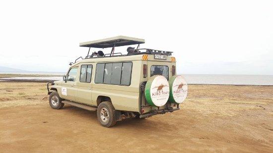 Kileo Tours & Safaris Company Ltd