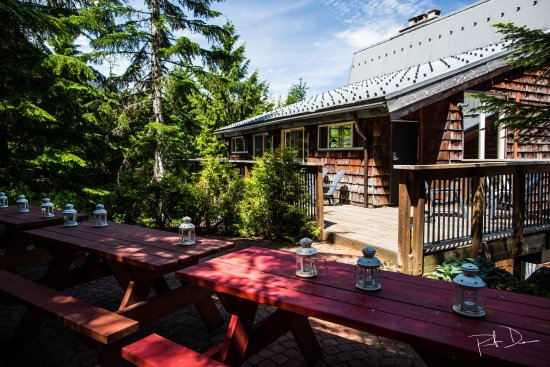 Whistler Lodge Hostel: Outside Deck