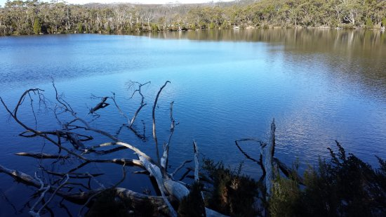 Mount Field National Park, Australië: Lake Dobson