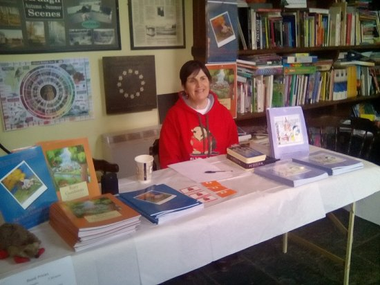Longford, Ireland: Selling my children's books at the craft fair.