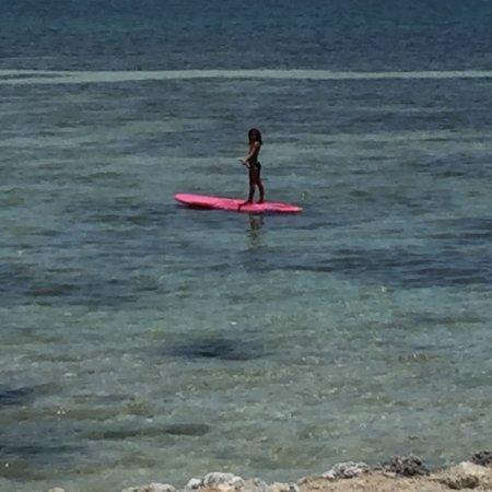 Caloosa Cove Resort & Marina: photo0.jpg