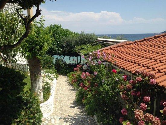 Hotel Villa Nisteri: Steps. Down to beach