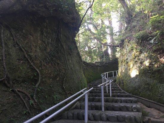 Chonan-machi, Ιαπωνία: Kasamori-ji Temple