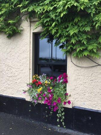 Дрогеда, Ирландия: photo0.jpg