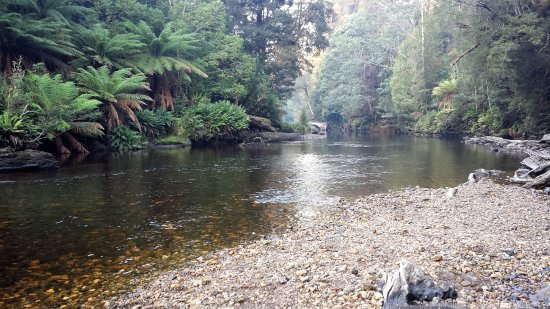 Maydena, Australien: The beautiful Styx River.