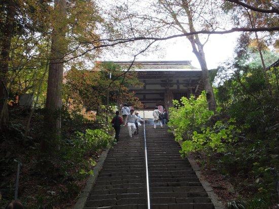 Aisho-cho, Japón: 本堂までの急で長い階段