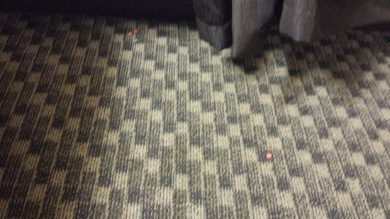 Comfort Inn & Suites Pittsburgh Allegheny Valley: Dirty floor with some kind of medication left behind