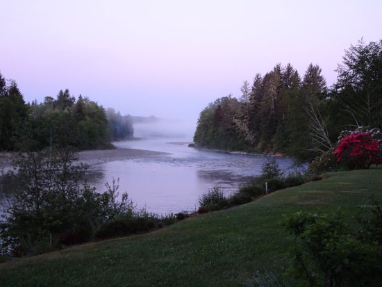 Quillayute River Resort: morning mist