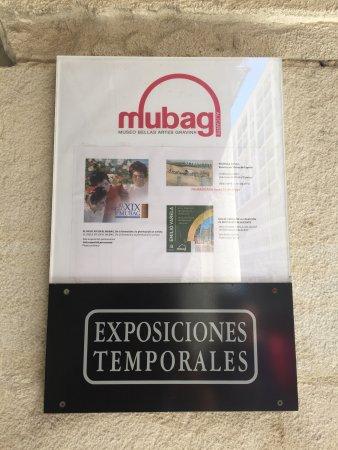 Museo de Bellas Artes Gravina: photo0.jpg