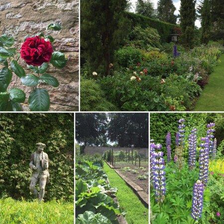 Colerne, UK: Gardens