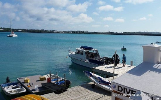 Dive Bermuda at Grotto Bay