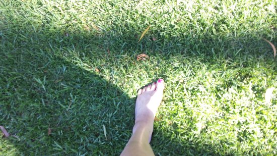 Sisters Beach, Australien: Nice soft grass under the feet !