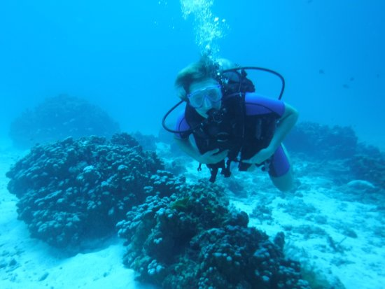 Dive Asia - Day Trips and PADI Courses Bild