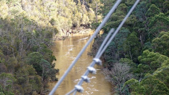 Barrington, Australia: The view through the wire fence downstream.