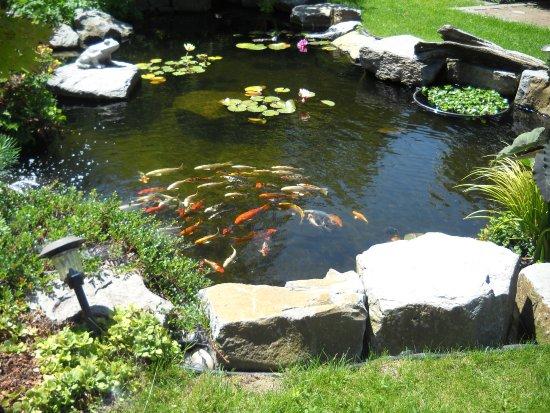 Woodbridge Ponds