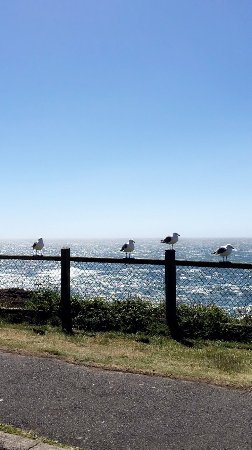 Depoe Bay, OR: Boiler Bay State Wayside